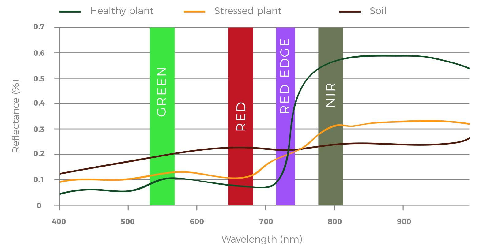 teledetekcja, długość fali, rośliny, uprawy, green, red, red edge, nir