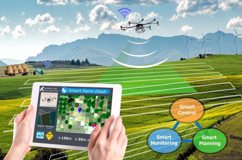 pole, mapowanie rolnictwo