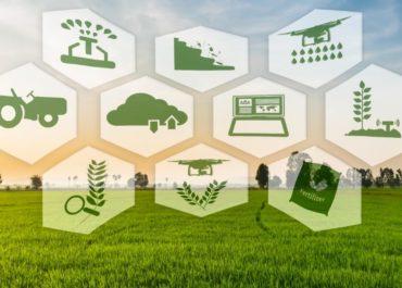Rolnictwo precyzyjne staje się coraz bardziej popularnym rozwiązaniem . Ale czym jest ? Od kiedy funkcjonuje? W tym artykule dowiesz się więcej.