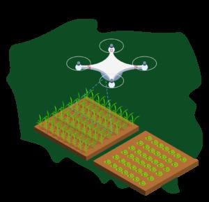 grafika, dron, polska. pole, uprawy
