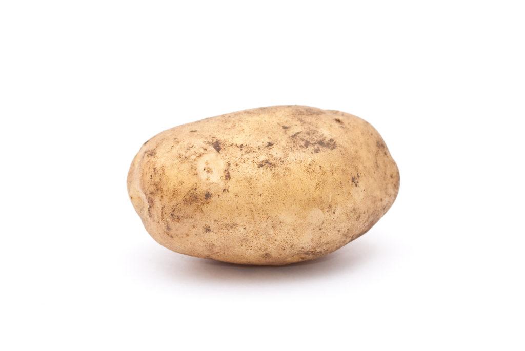 ziemniak, blog, rolnictwo