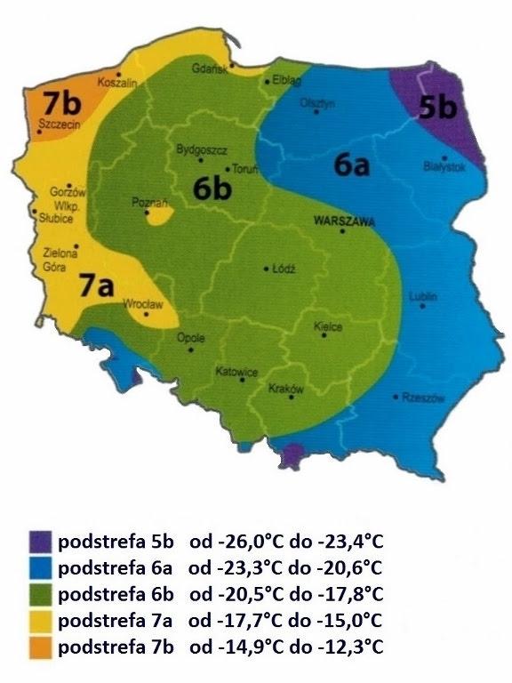 mapa, szkody, mróz, rolnictwo, polska, mrozoodporność, rosliny