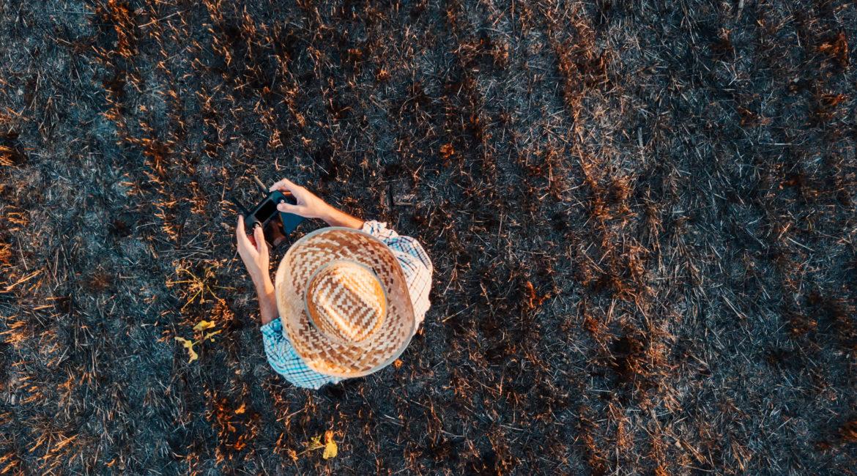 rolnik, pole, sterowanie, dron, widok z lotu ptaka, pole