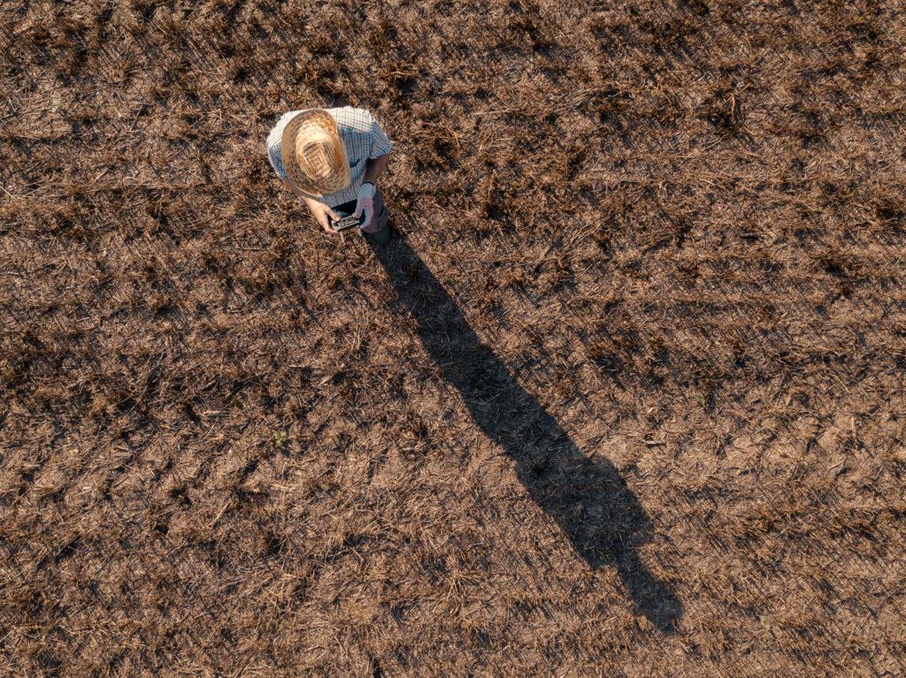 rolnik, pole, sterowanie, dron, widok zlotu ptaka, pole