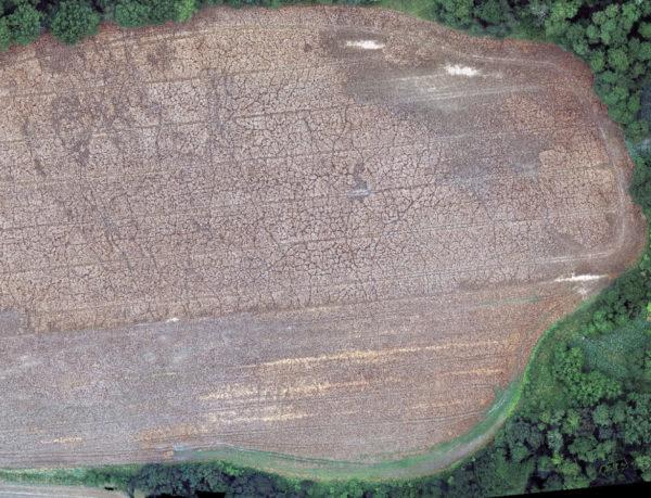 zdjęcie z drona, szkody łowieckie, liczenie szkód